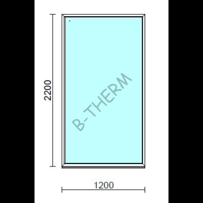 Fix ablak.  120x220 cm (Rendelhető méretek: szélesség 115-124 cm, magasság 215-224 cm.)   Optima 76 profilból