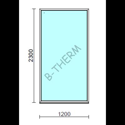 Fix ablak.  120x230 cm (Rendelhető méretek: szélesség 115-124 cm, magasság 225-234 cm.)   Optima 76 profilból