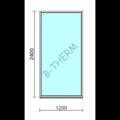 Fix ablak.  120x240 cm (Rendelhető méretek: szélesség 115-124 cm, magasság 235-240 cm.)  New Balance 85 profilból