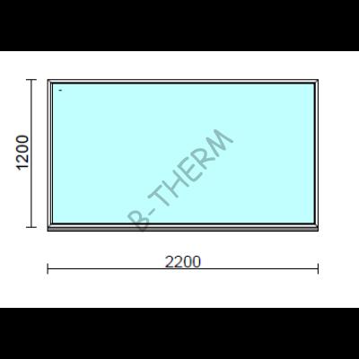 Fix ablak.  220x120 cm (Rendelhető méretek: szélesség 215-224 cm, magasság 115-124 cm.)  New Balance 85 profilból